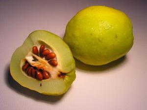 ayva seeds