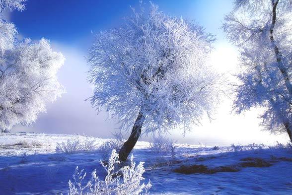 zimovka2